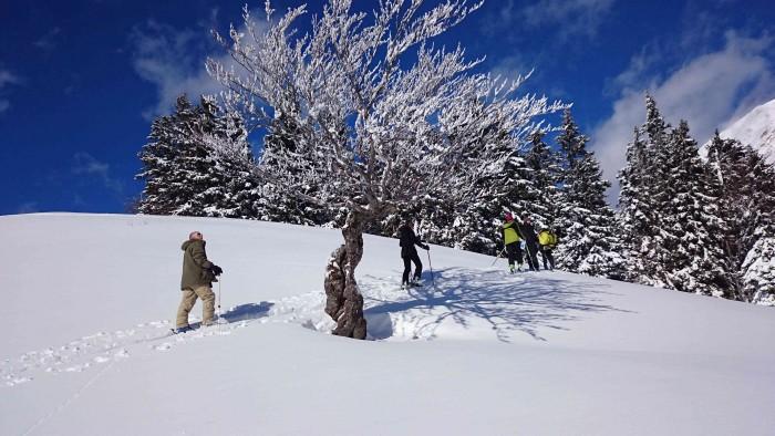 walking-snow2