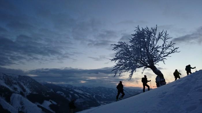 walking-snow3
